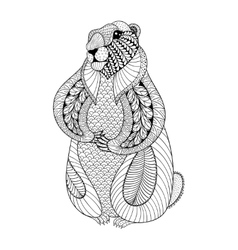 Hand drawn groundhog for adult coloring pages vector