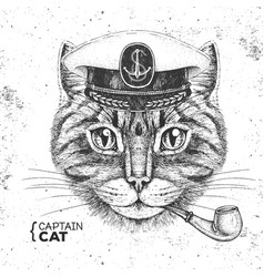 Hipster animal cat captains cap and smoking pipe vector
