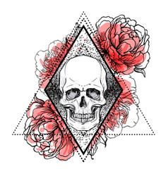 human skull with peony rose and poppy flowers vector image