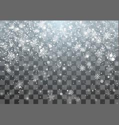 Magic christmas snowfall template falling vector