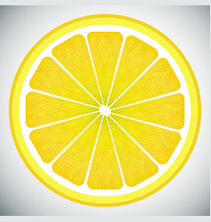 Piece lemon high quality vector
