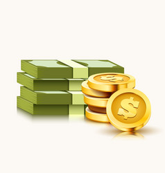 Stack paper dollars and golden coins isolated vector