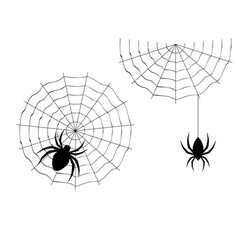Cartoon spider2 vector