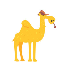 cute cartoon camel in brown cap and smoking pipe vector image