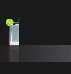 Gin tonic cocktail vector