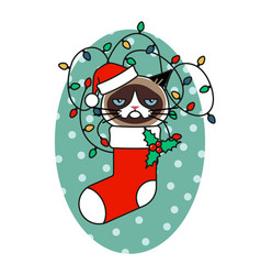 grumpy cat in christmas hat in christmas sock vector image
