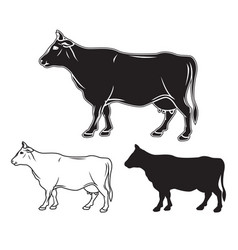 hand drawn cow set vector image