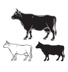 hand drawn cow set vector image