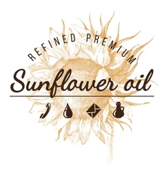 Oil emblem over sunflower sketch vector