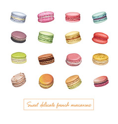 Sweet delicious french macarons vector