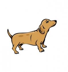 weiner dog vector image vector image