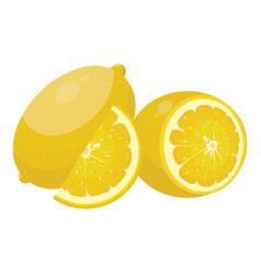 cartoon lemon fresh vitamin fruit juicy citrus vector image
