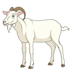 Color with a goat vector