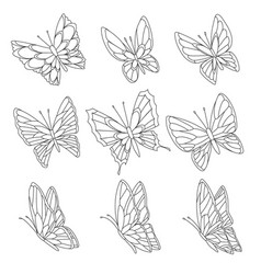 coloring book page butterflies isolated on vector image