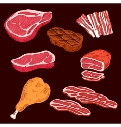 Sketch of sliced meat products vector