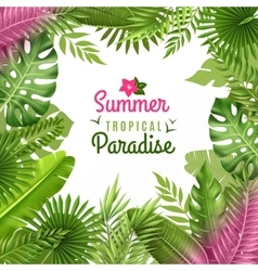 Tropical Foliage Decorative Background Frame vector