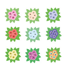 briar roses flowers bouquets isolated design vector image vector image
