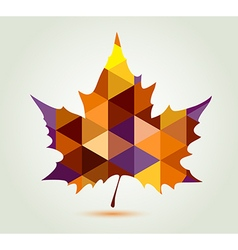 Abstract autumn maple leaf vector