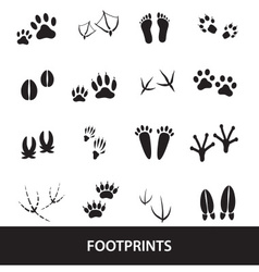Basic animal footprints set eps10 vector