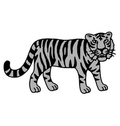 cute tiger cartoon roaring vector image