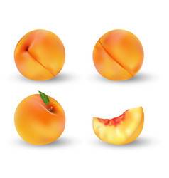 Realistic ripe peach fruit isolated on white vector