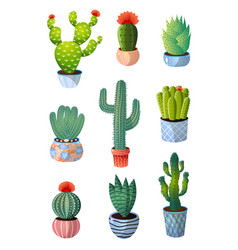 set colorful green cactus in pot for home vector image