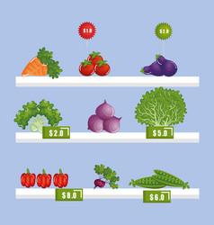 Supermarket groceries in shelf vector