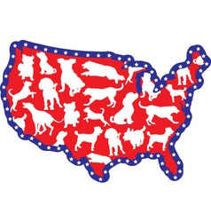 Us map and dogs vector