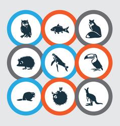 Zoo icons set with kangaroo hedgehog blowfish vector