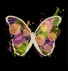 art sketched colorful butterfly symbol in vector image