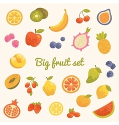 Big colorful summer set of fruits in vector