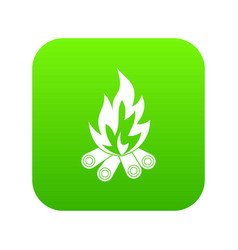 bonfire icon digital green vector image