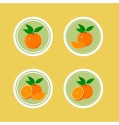 Design Stickers with Juicy Orange vector image