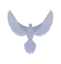 Dove flying bird vector