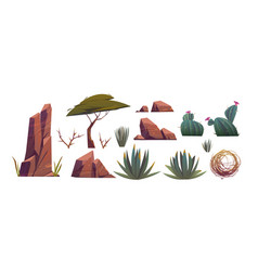Tumbleweed cactuses and rocks sand desert vector