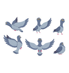 collection of cartoon pigeons vector image vector image