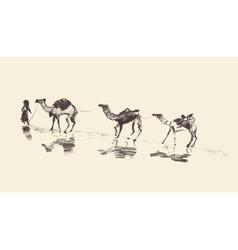 Caravan Camels Desert Sketch vector