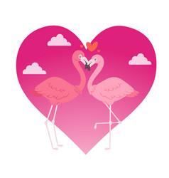 flamingo couple in love cartoon animal lovers vector image