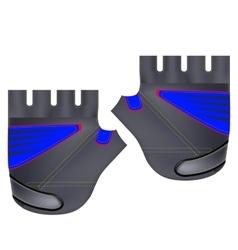 Gloves for Sport vector