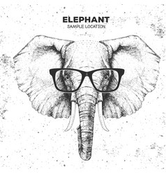 hipster animal elephant hand drawing muzzle vector image