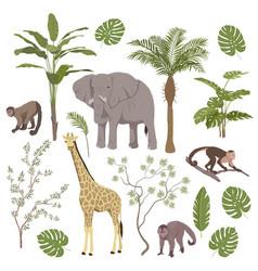 set jungle animals and tropical vegetation vector image