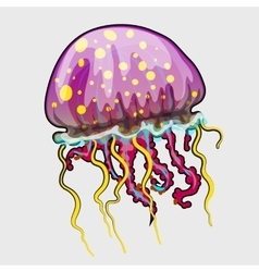 Spotted a pink jellyfish in cartoon style vector
