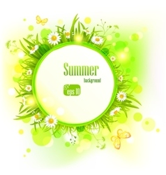 Summer light background with daisies vector image