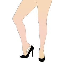 The beautiful legs of a woman vector image