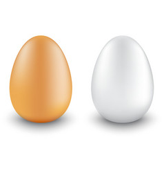 two chicken eggs realistic different colors vector image