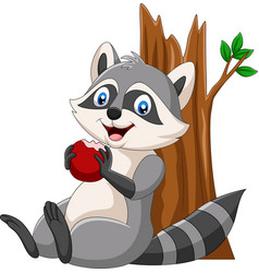 Cartoon raccoon eating a red apple vector