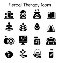 Herbal therapy hospital icon set vector