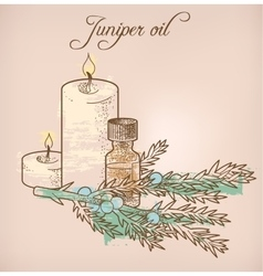 Juniper essential oil and candles vector image
