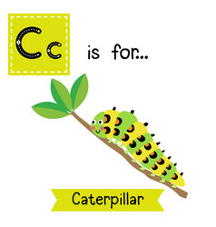 Letter c tracing caterpillar crawling vector