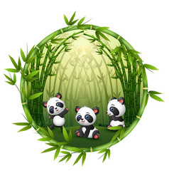 Pandas are playing in bamboo vector